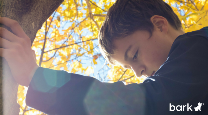 What To Do When Your Child Is Called A Bully