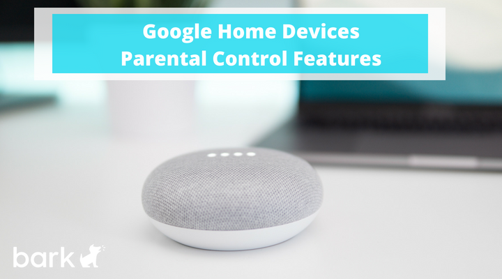 Google Home Devices Parental Control Features