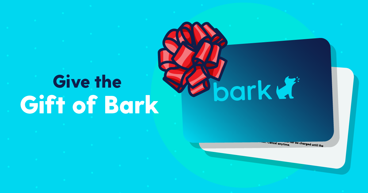 Give the Gift of Bark This Holiday Season With Bark Gift Cards