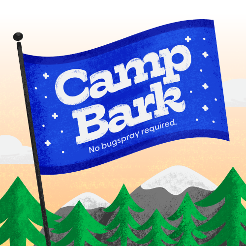 Welcome to Camp Bark! Summer Activities for Kids