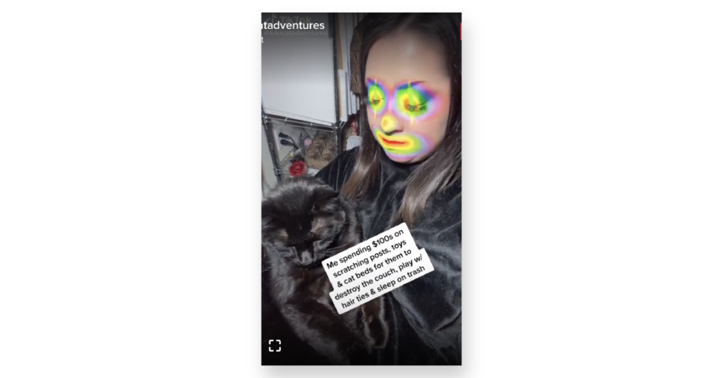 Woman with clown makeup holding cat