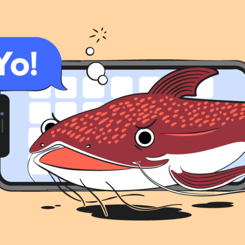 What is catfishing header image with fish in front of phone screen