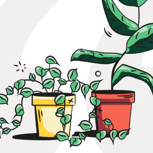 Mental health quotes header image of plants